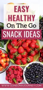 healthy easy on the go snacks